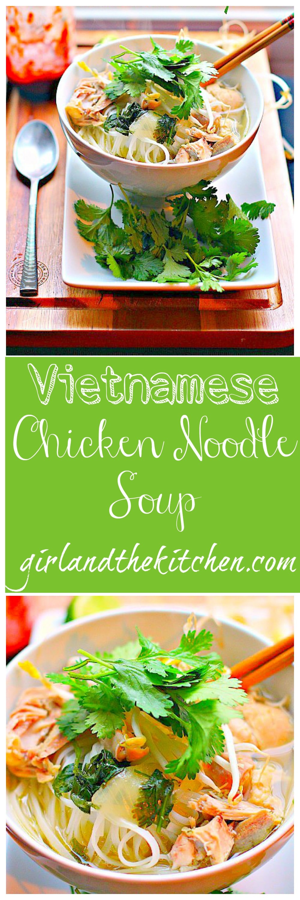 Vietnamese Chicken Noodle Soup .Collage