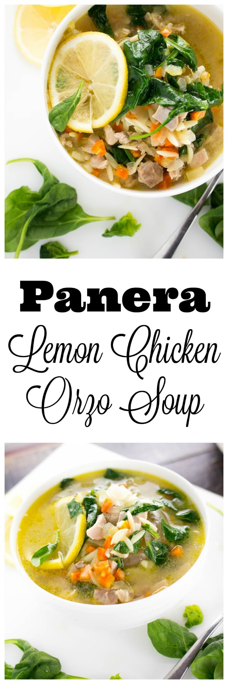 Panera Lemon Chicken Orzo Soup - Girl and the Kitchen
